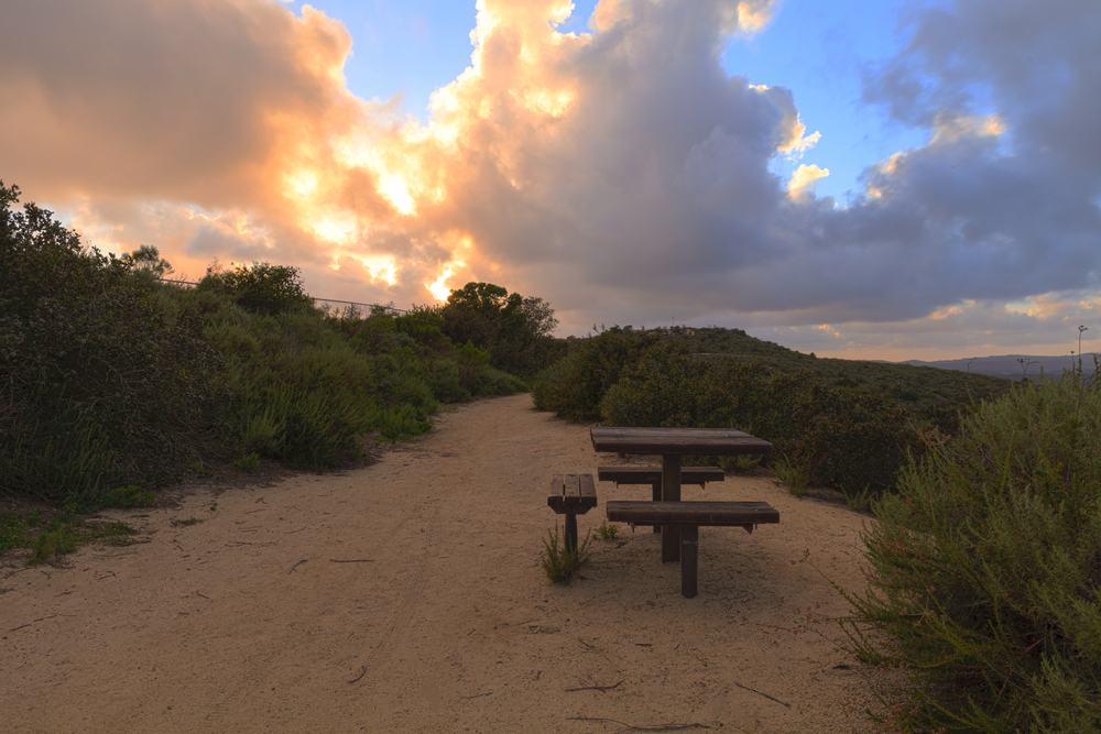 Best Hikes in Laguna Beach